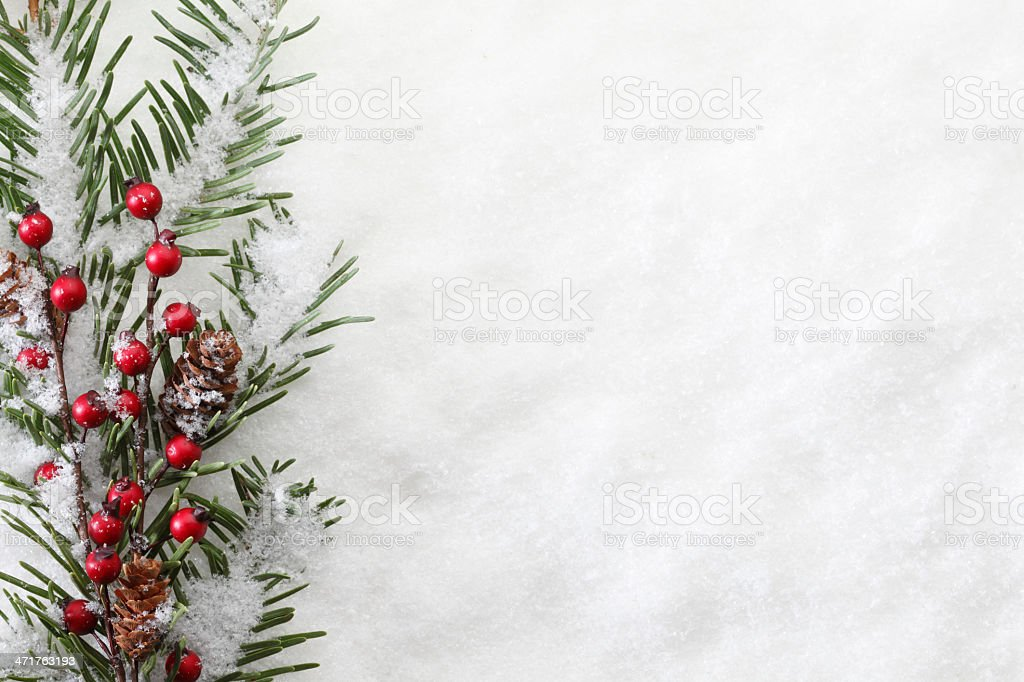 Christmas Boughs royalty-free stock photo