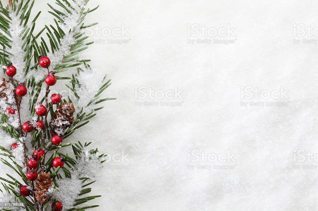 Christmas Boughs stock photo