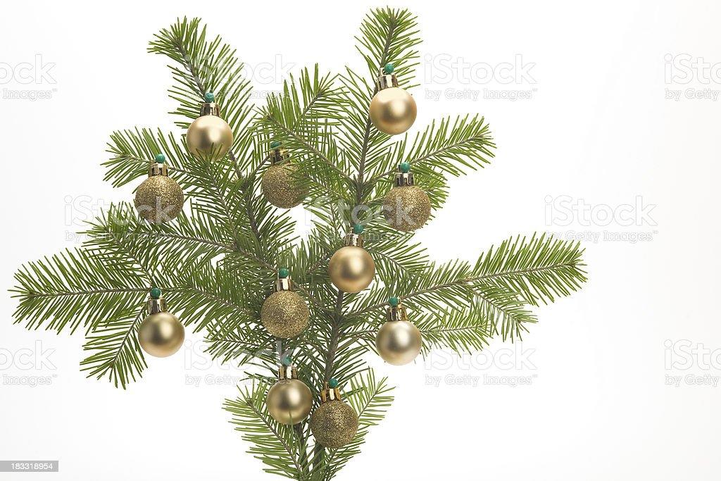 Christmas branch stock photo