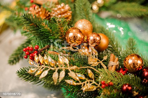 istock Christmas branch with golden and red decoration 1073318770