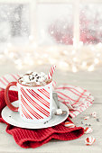 Christmas hot chocolate with candy cane stick in front of a wintery window.