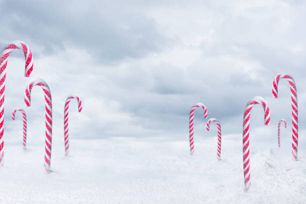 Candy Cane Forest Stock Photos Pictures Royalty Free Images