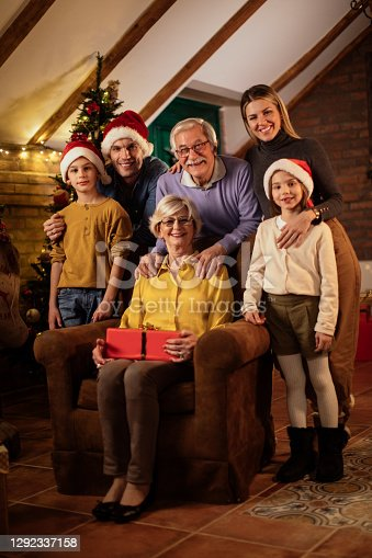 Family of six posing for a Christmas photo