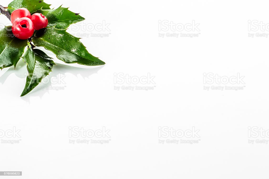 Christmas card with holly berry  isolated on white background. stock photo
