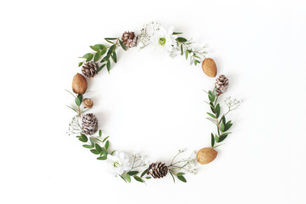 クリスマスの円花の組成物。ユーカリの枝、カラマツ、アーモンド、菊、白い背景の上に赤ちゃんの呼吸花の花輪。冬の結婚式のデザイン。フラット横たわっていた、トップ ビュー。 - リース ストックフォトと画像