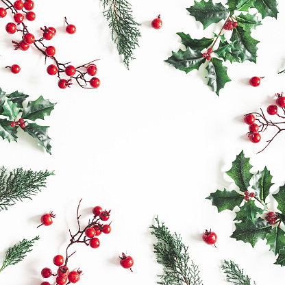 Christmas composition. Frame made of christmas plants on white background. Flat lay, top view, copy space
