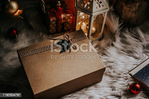 Christmas Concept  and Gift