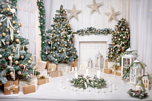 Christmas Decor Christmas Tree Decorations And Holiday Homes New Years Interior With A Fir Tree In White Tones Stock Photo Download Image Now Istock