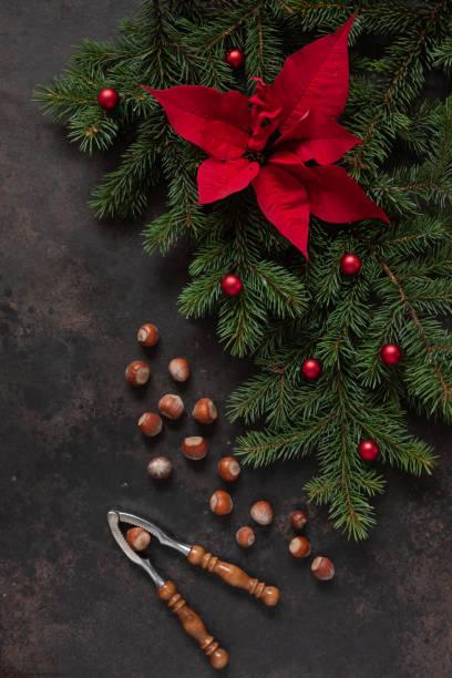 Decoração do Natal com filiais da abeto-árvore, poinsettia, avelãs e quebra-nozes - foto de acervo