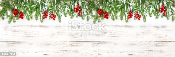 istock Christmas decoration Floral holidays banner Evergreen tree branches 626217508