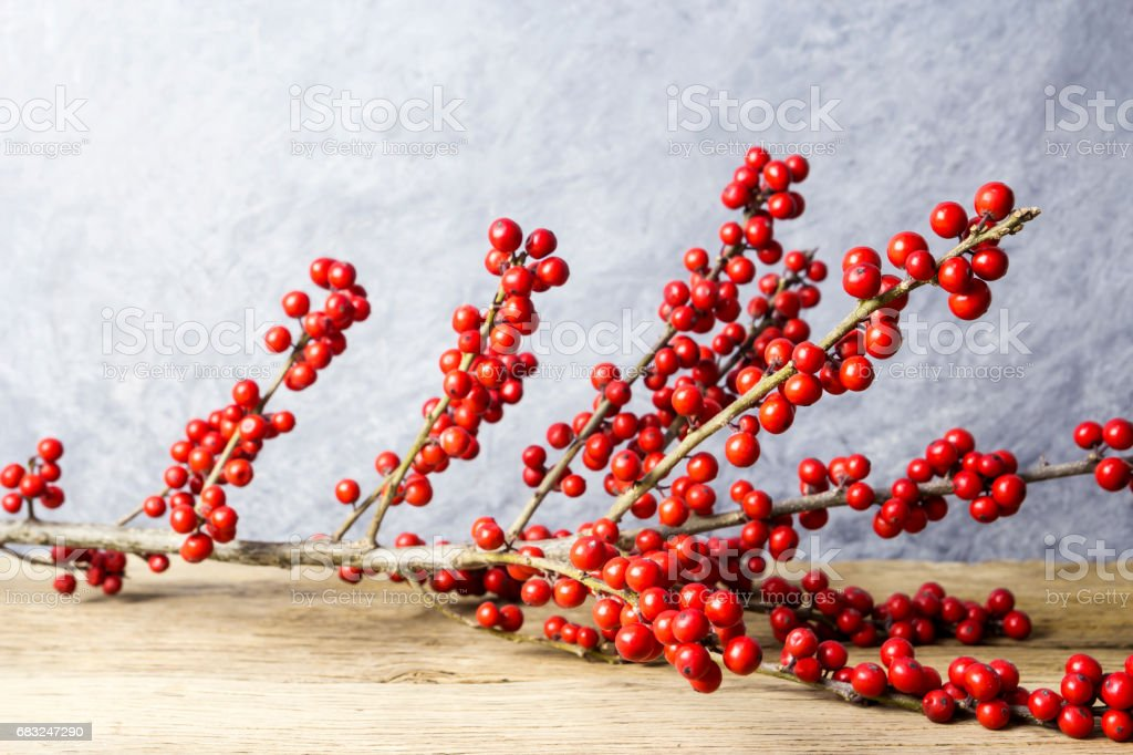 Christmas decoration ilex verticillata or winterberry holly on old wood royalty-free stock photo