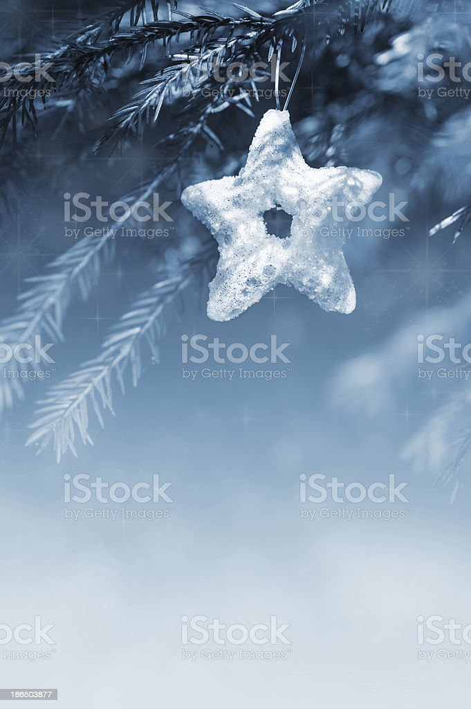 Christmas decoration on the fir branch royalty-free stock photo