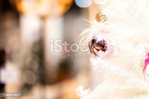 istock Christmas decoration 1165610521