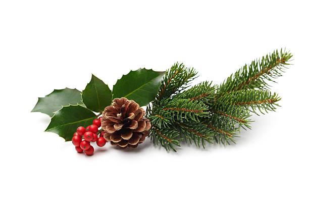weihnachtsdekoration - stechpalme stock-fotos und bilder