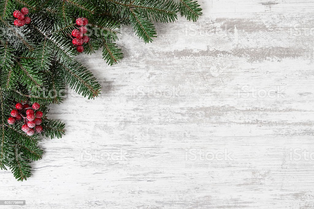 Christmas Decoration with Fir Tree and Holly Berry stock photo