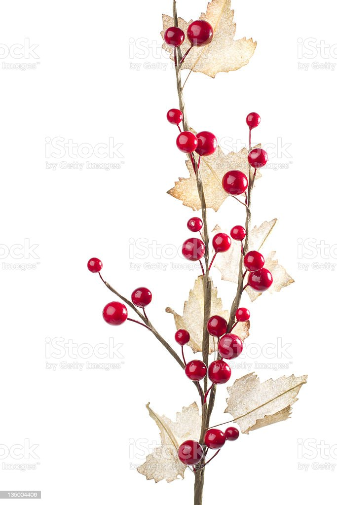Christmas decoration with red berries and autumn leafs royalty-free stock photo