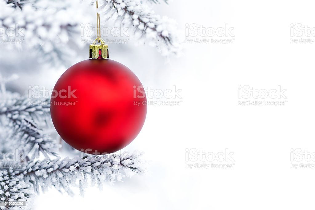 Christmas decorations on the pine branch stock photo