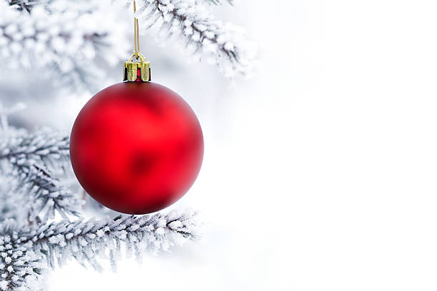 Décorations de Noël sur la branche de pin - Photo