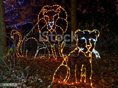 Washington DC, USA - November 23, 2018: ZooLights - decorations at Smithsonian National Zoological Park.
