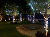 istock Christmas decorations 1095614920