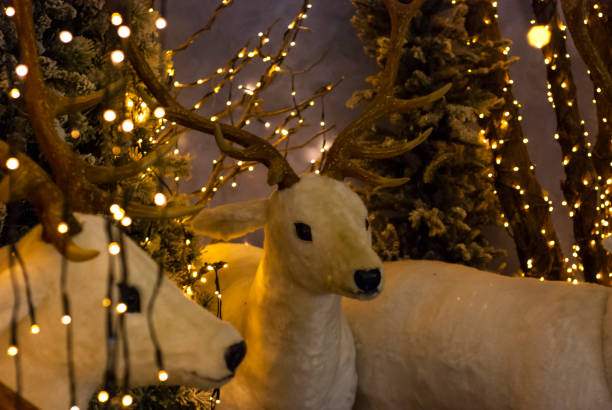 Christmas decorations, puppet of a white reindeer with lights - foto stock