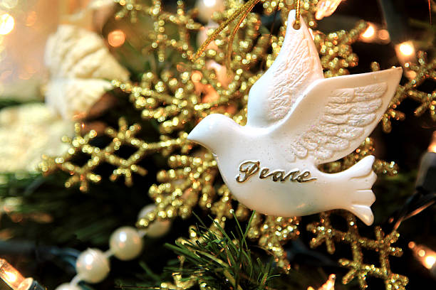 Christmas dove of peace on gold and white background stock photo