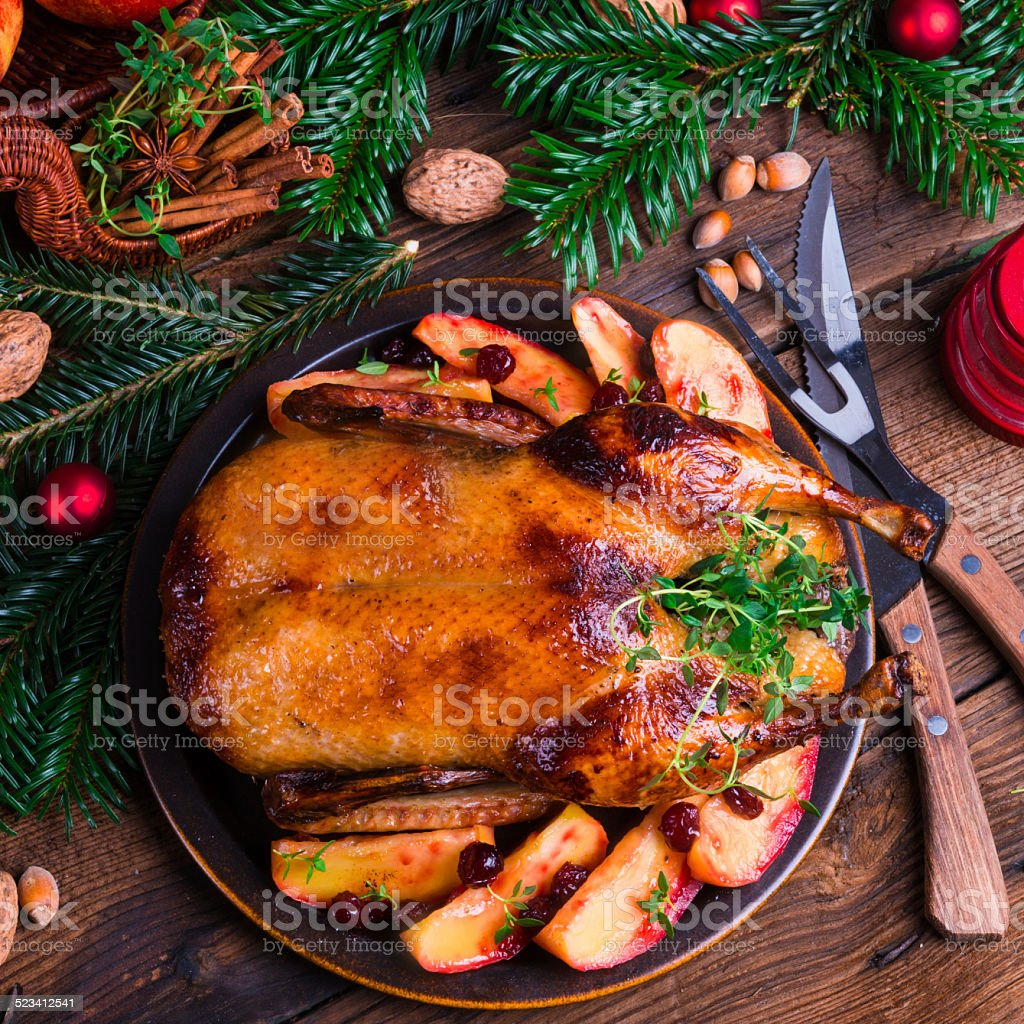 Christmas duck stock photo