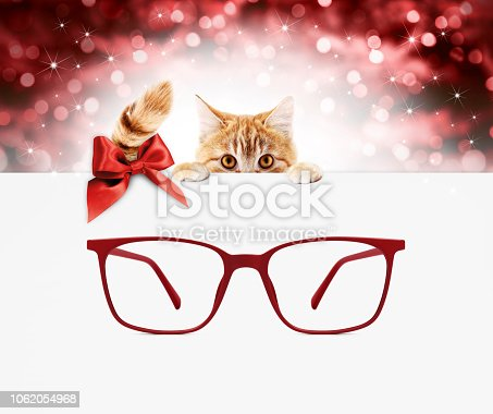 670414478 istock photo christmas eyeglasses gift card, ginger cat with red spectacles and red ribbon bow, copy space template on blurred xmas lights 1062054968