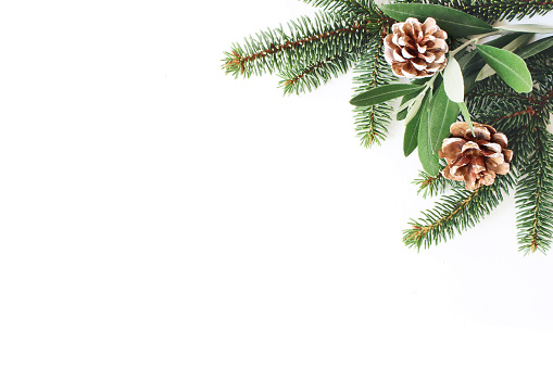 Christmas festive styled stock composition. Decorative corner. Pine cones, Fir and olive tree leaves and branches white wooden background, flat lay, top view. Copy space.