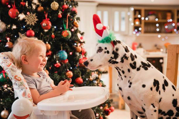 Christmas festivities picture id1073696776?b=1&k=6&m=1073696776&s=612x612&w=0&h=tfcj8ksbr0mvjdfem1kidcqauixf59d3xtxorqi39re=