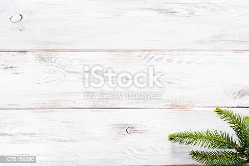 Christmas fir branch on white wooden background