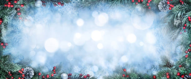 Christmas fir branches and bokeh background stock photo