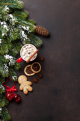 istock Christmas fir tree, hot chocolate and marshmallow 623744792