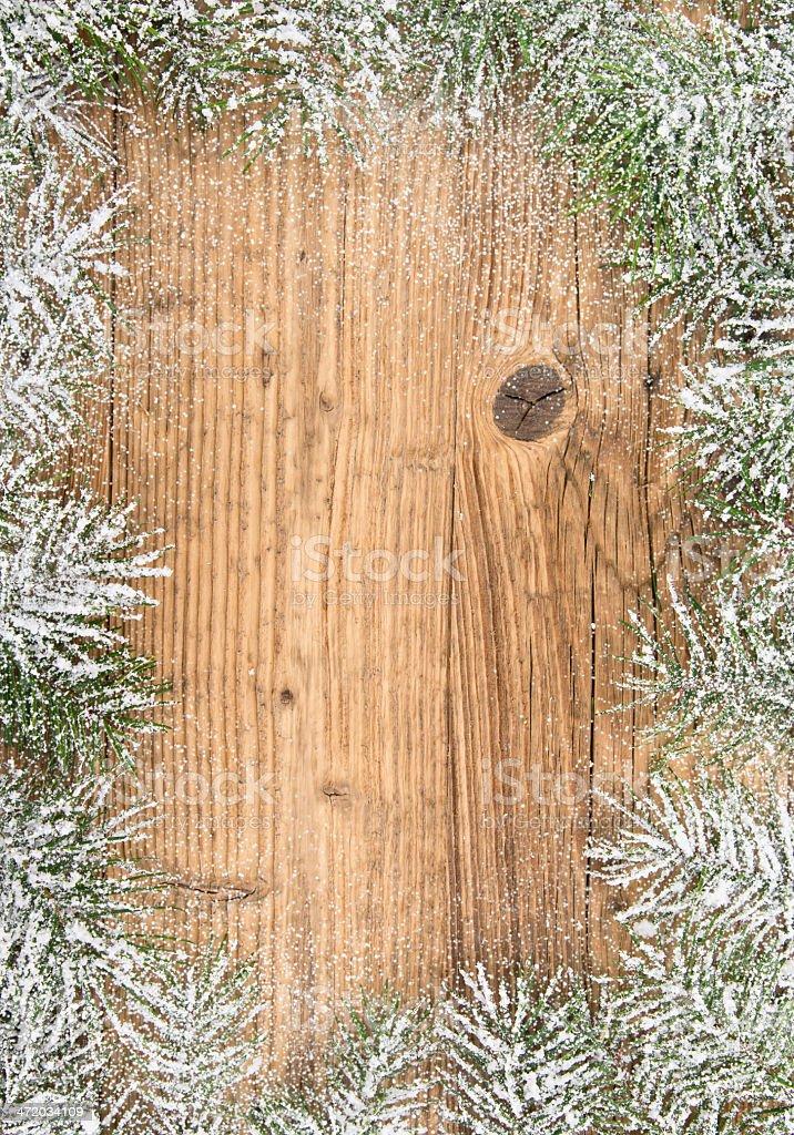 Christmas fir tree royalty-free stock photo
