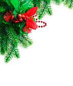 istock Christmas fir twig 153814211