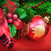 istock Christmas fir twig 521493463