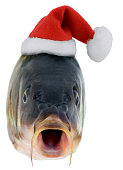 istock Christmas fish in Santa red hat 874636762