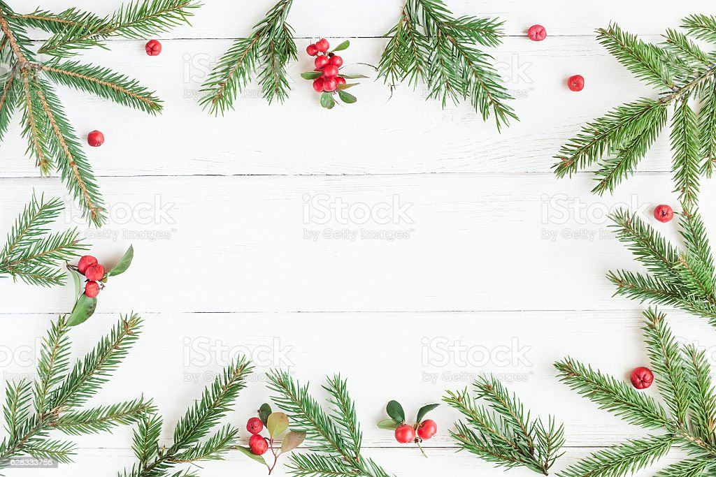 Christmas frame made of fir branches, red berries stock photo