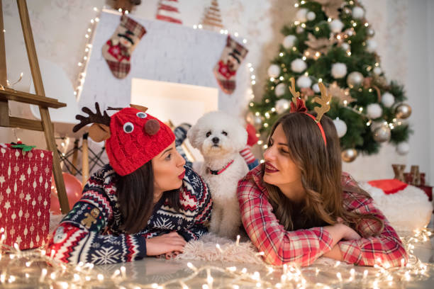 christmas friends - dtephoto stock photos and pictures