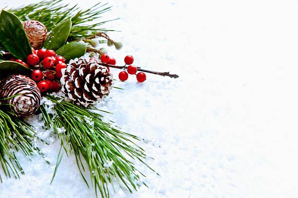 christmas garland - stechpalme stock-fotos und bilder