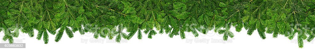 christmas garland super wide panorama banner with fir branches – Foto