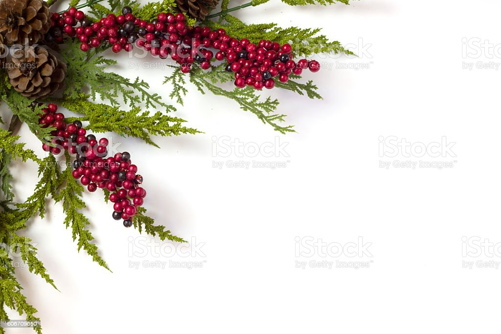Christmas Garland with Pine Cones and Berries isolated on white stock photo