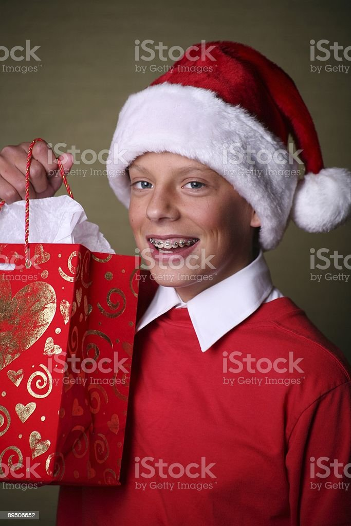 christmas gift bag royalty-free stock photo