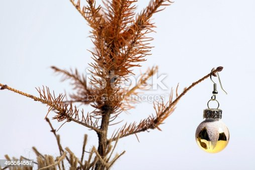 Color shot of a small dead Christmas tree.