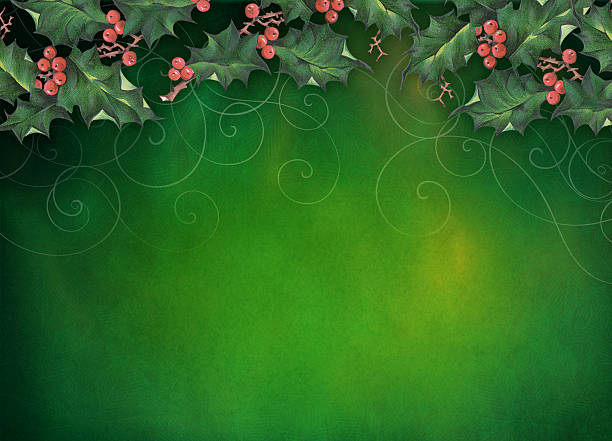 christmas holly background - christmas green stock photos and pictures