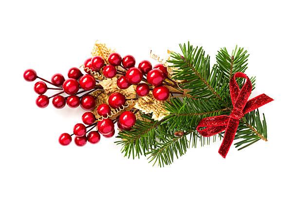 Christmas holly branch Dekoration – Foto