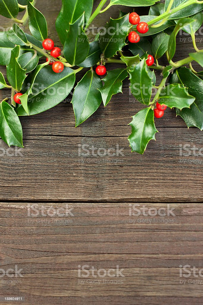 Christmas Holly Decoration royalty-free stock photo