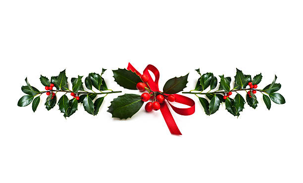 christmas holly - garland stock photos and pictures