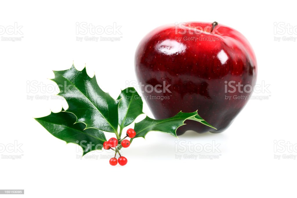 Christmas Holly with Red Apple, Isolated on White royalty-free stock photo