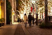 クリスマス イルミネーション ライト日